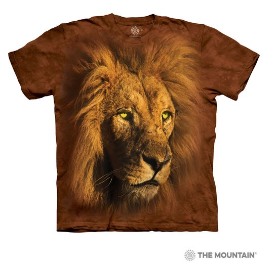 t-shirt portrait lion photo photographie photographe animal sauvage wild feline portrait bigcat