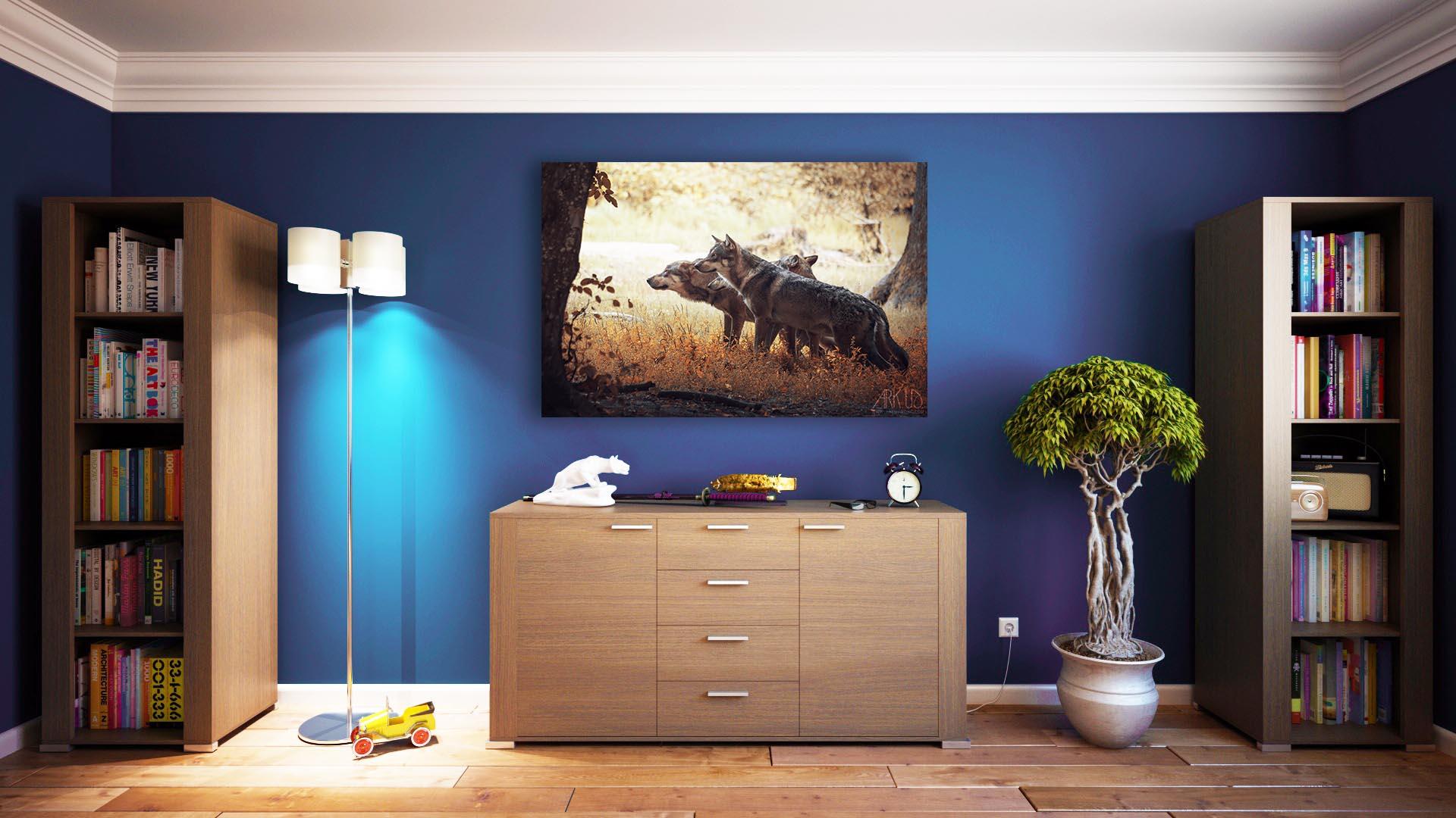 tirage poster décoration art artistique loups photo photographie nature sauvage animalière var paca toulon animaux