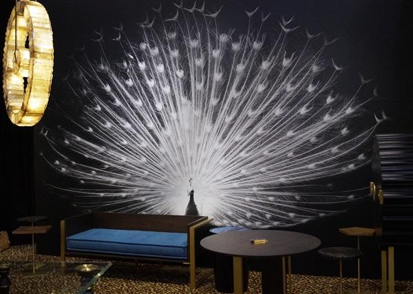 papier peint paon noir et blanc black and white peacock tirage art photographie animalière animal oiseau décoration mur magnifique roue