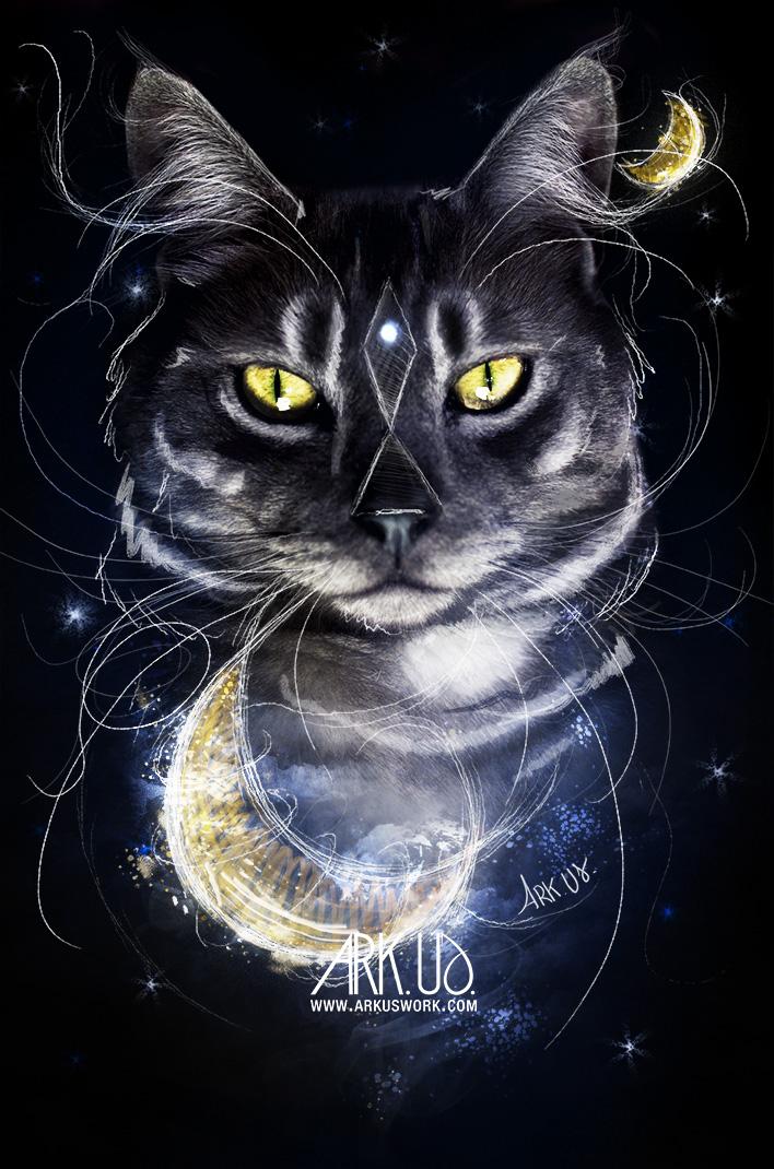 dessin,art,artistique,numérique,photo,photographie,lune,bleu,chat,félin,original,france,toulon,var,paca,